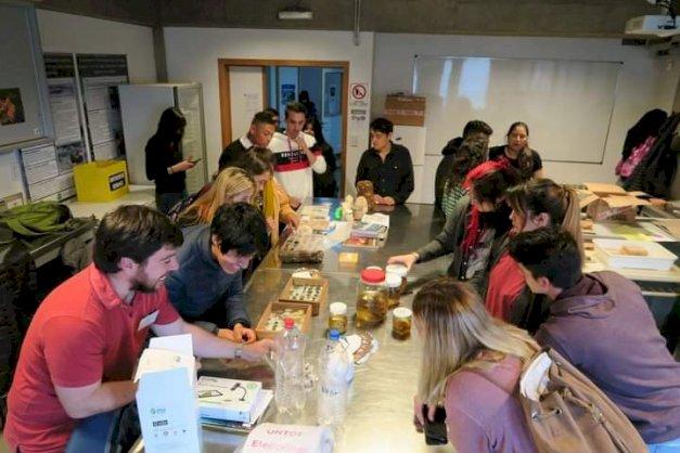 La imagen muestra a estudiantes del ICPA haciendo trabajo de laboratorio