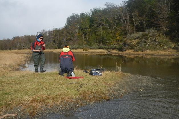 Estudian el ADN de los ríos fueguinos para diversificar la pesca deportiva en la región