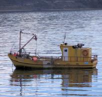 Cluster de Pesca